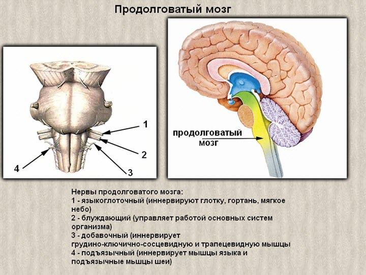 hipertenzija su gimdos kaklelio osteochondroze, kaip gydyti