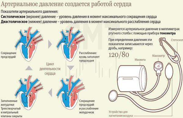 hipertenzijos slėgio indikatorius)