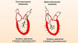 Kraujospūdžio savitvarkos dienoraščio lentelė