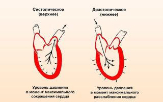 Kraujo spaudimas viršutinė ir žemesnė: ką žmogui reiškia 120?